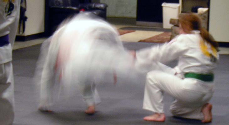 Budo Martial Arts Karate Throw