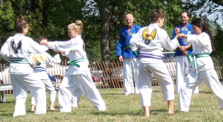 Budo Martial Arts Kids Karate-do